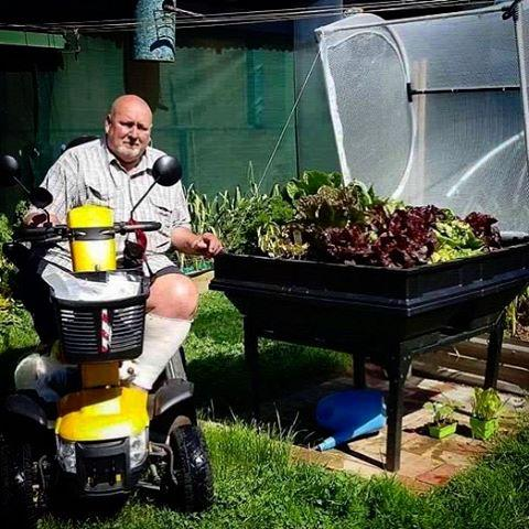 wheelchaired man next to raised garden bed