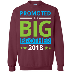 Brothers T-shirt Promoted to Big Brother 2018 T-shirt Printed Crewneck Pullover Sweatshirt 8 oz - WackyTee