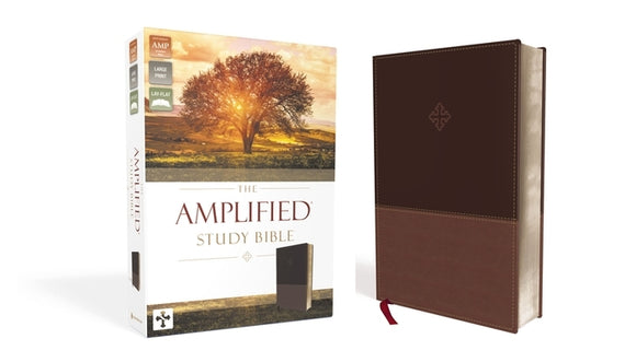 Amplified Study Bible, Imitation Leather, Brown by Zondervan