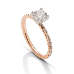 Rose and Platinum Simple Solitaire with Diamond Shank - Charles Koll Jewellers