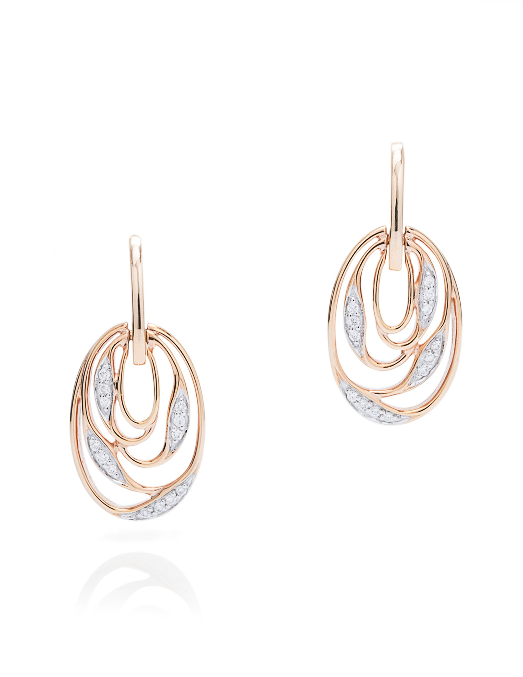 Wrapped Vine Rose Gold Earrings - Charles Koll Jewellers