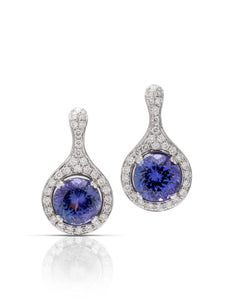 Tanzanite and Diamond Earrings - Charles Koll Jewellers