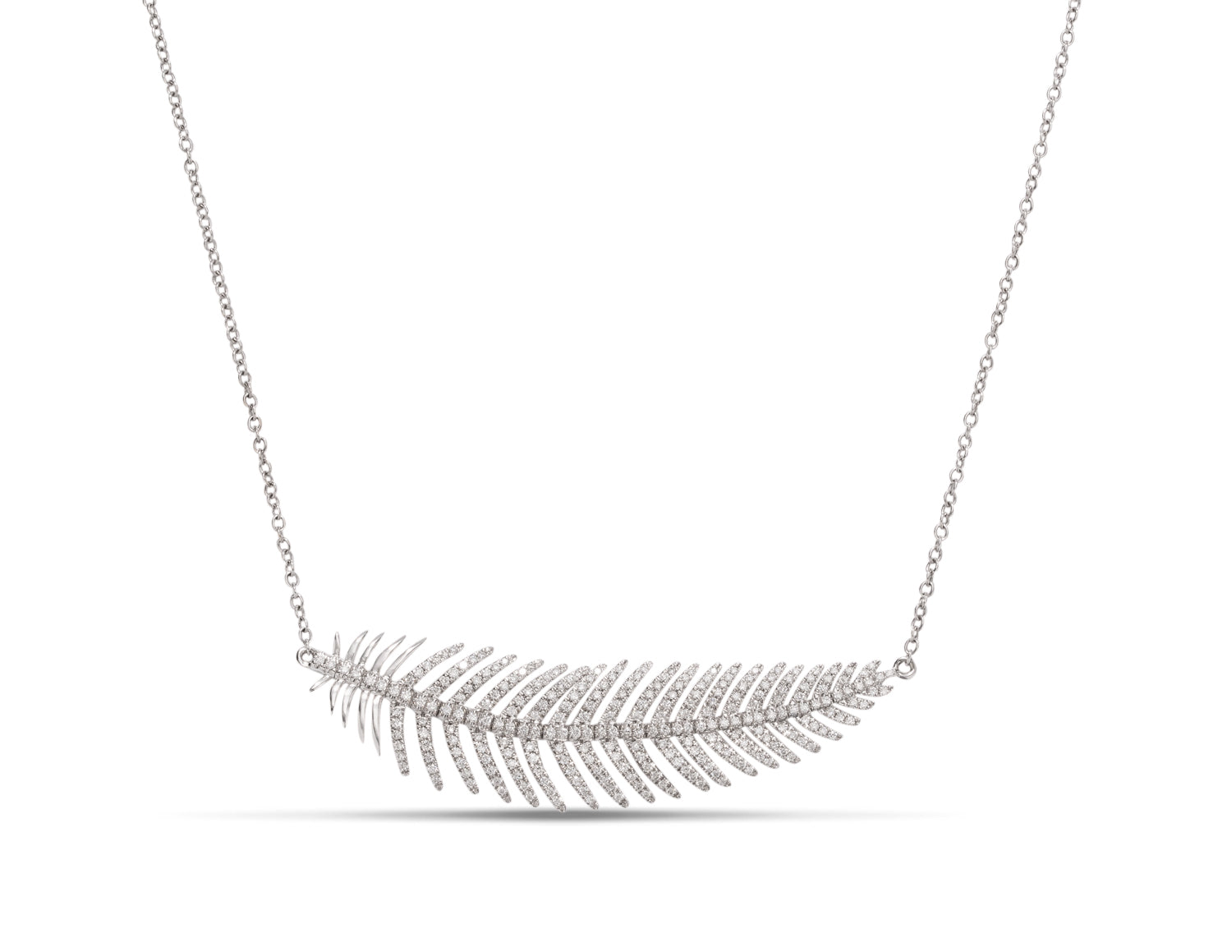 18k White Gold Diamond Feather Necklace - Charles Koll Jewellers
