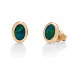 Australian Opal Oval Stud Earrings - Charles Koll Jewellers