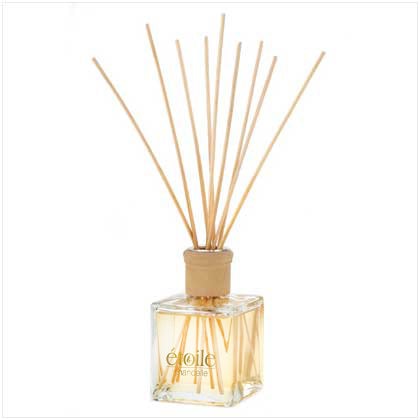 Raspberry & Violet Room Diffuser