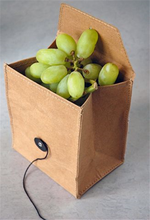 Lunch Bag Fruit