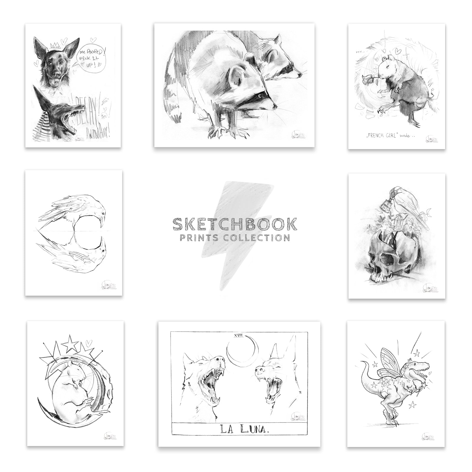 Sketchbook Collection (Boxed Set)