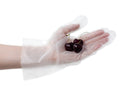 Hybrid Disposable Food Handling Long Cuff TPE Gloves
