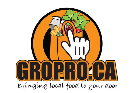 GROPRO is hiring! Business Coordinator