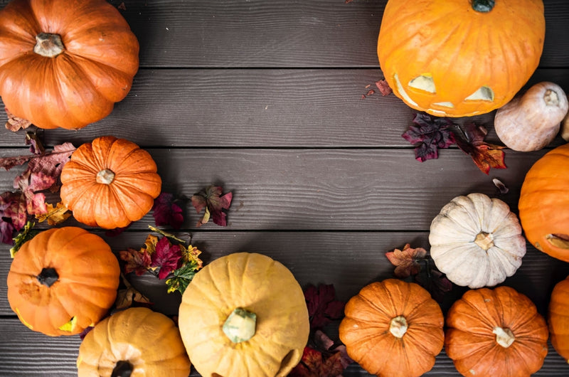 How to Have a Sustainable and Organic Halloween