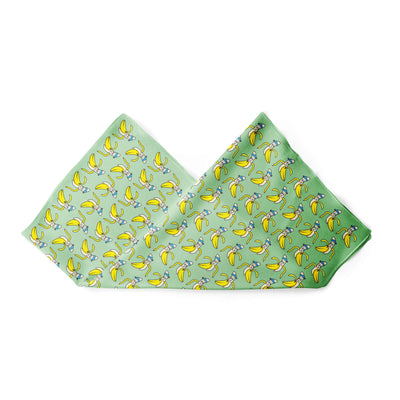Banana Bandanas Bananaman overripe dog bandana banana logo pattern green alternative photo