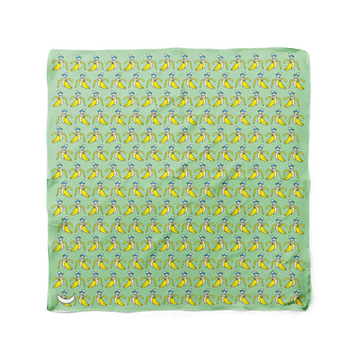Banana Bandanas Bananaman dog bandana banana logo pattern green flat photo