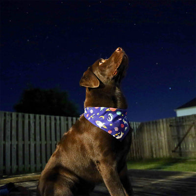 Banana Bandanas Space Explorer dog bandana space illustration dog bandana
