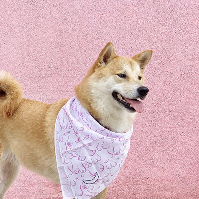 Banana Bandanas Titty Town dog bandana boobs illustration dog bandanas