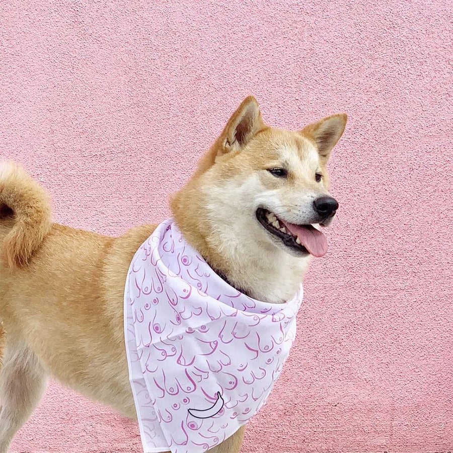 Banana Bandanas Titty Town dog bandana boobs illustration flat photo