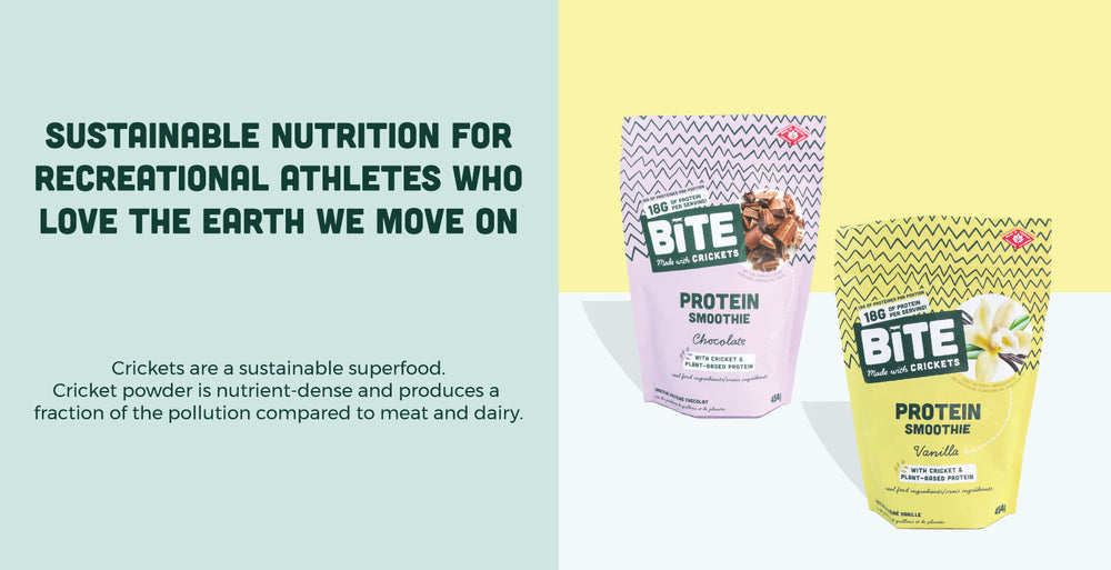 Bite Snacks cricket protein bars and cricket protein powders