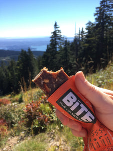 Bite Snacks Cricket Protein Energy Bar Ginger