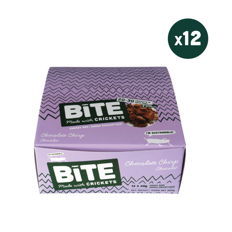 bite snacks cricket protein chocolate energy bar