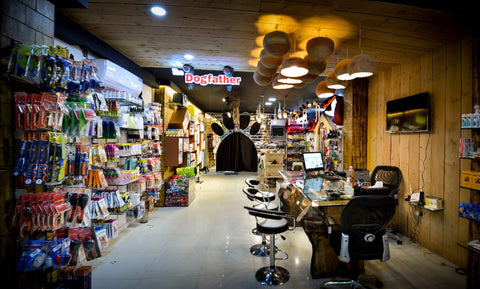 dogfather pet shop interior