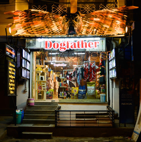 best dog shop Jaipur india