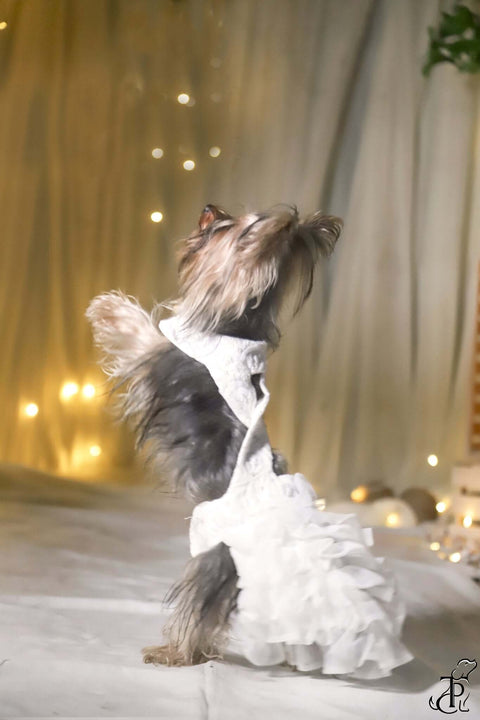 Cross Back White Tulle Ruffled Gown For Dogs