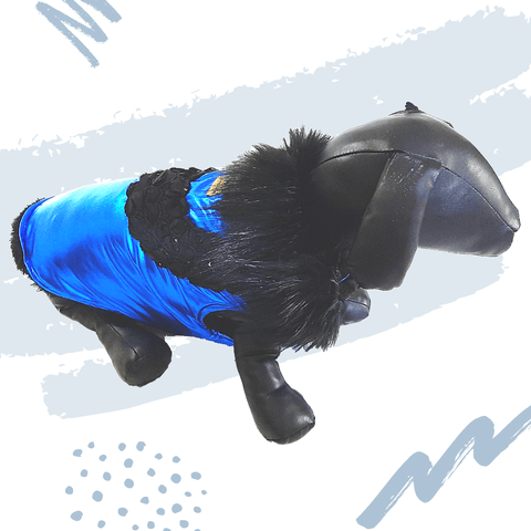 Premium Blue Winter Wear For Dogs.
