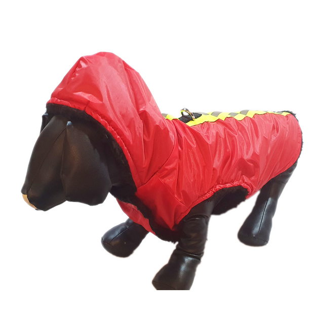 Regular Winter Wear For Dogs.