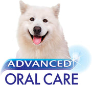 Nylabone Advanced Oral Care Dental Kit For Dogs