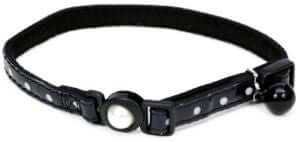 Coastal Safe Cat Collar With Polka Dots (3/8″)- Black