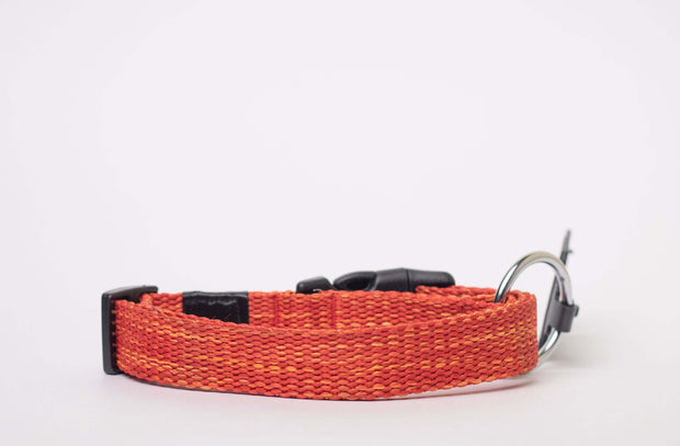 CQ Melange Collar For Dogs