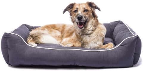 Dogs Gone Smart Lounger Bed – Pebble Grey