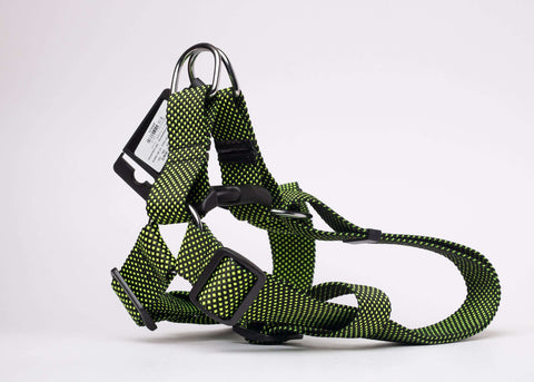 CQ Club Green Harness For Dogs