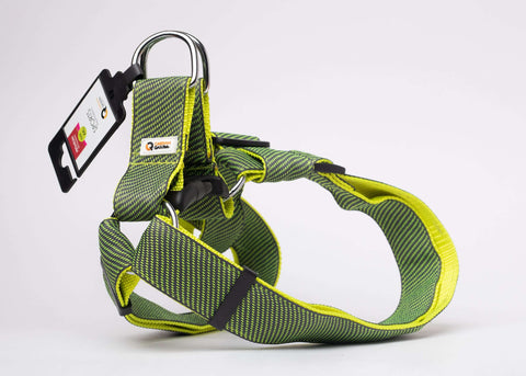 CQ Sports Green Harness For Dogs