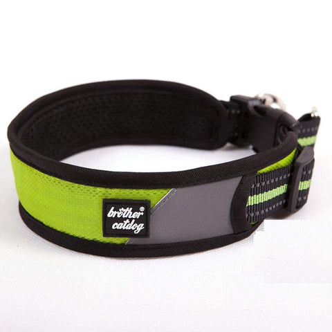BCD Strong Padded Dog Collar
