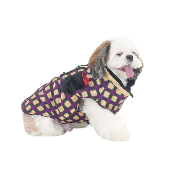 Designer Purple Checkered Wedding/Festive Traditional Sherwani Jacket For Dogs
