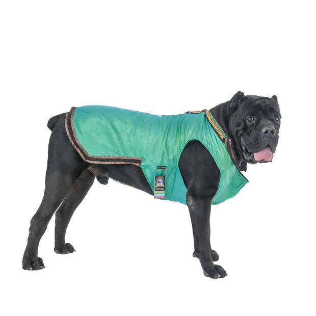 Green Designer Wedding/Festive Traditional Jacket For Dogs