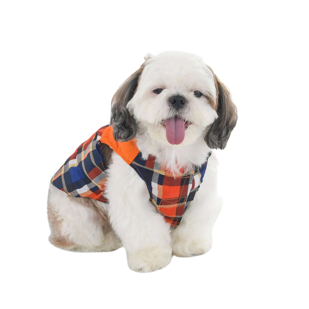 Orange Designer Checkered T-Shirt For Dogs