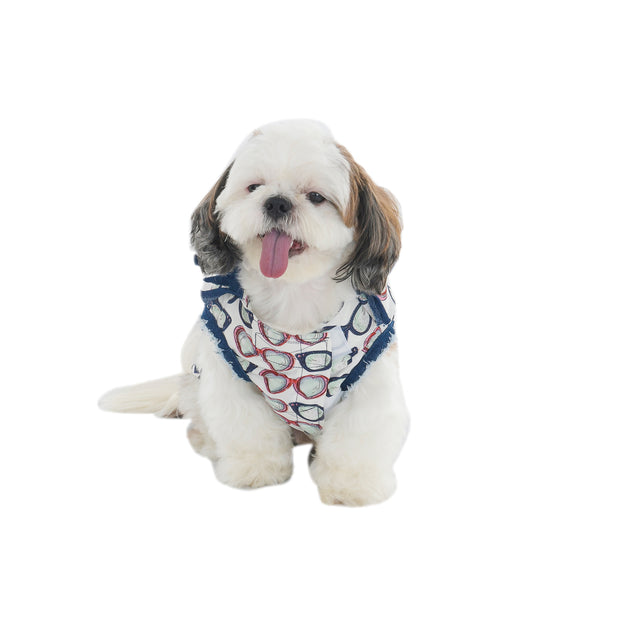 White Designer T-Shirt With Motifs For Dogs