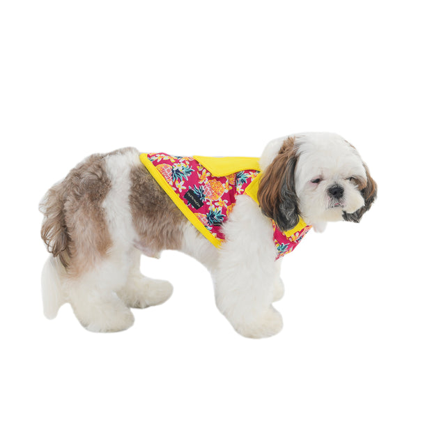 Yellow Designer Floral Printed T-Shirt For Dogs