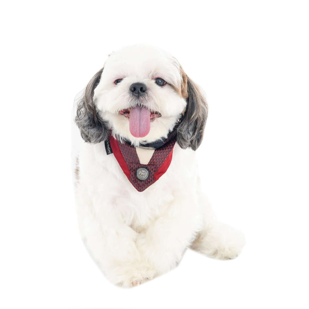 Maroon Studded Tuxedo Dog Bandana With Easy To Use Adjustable Strap