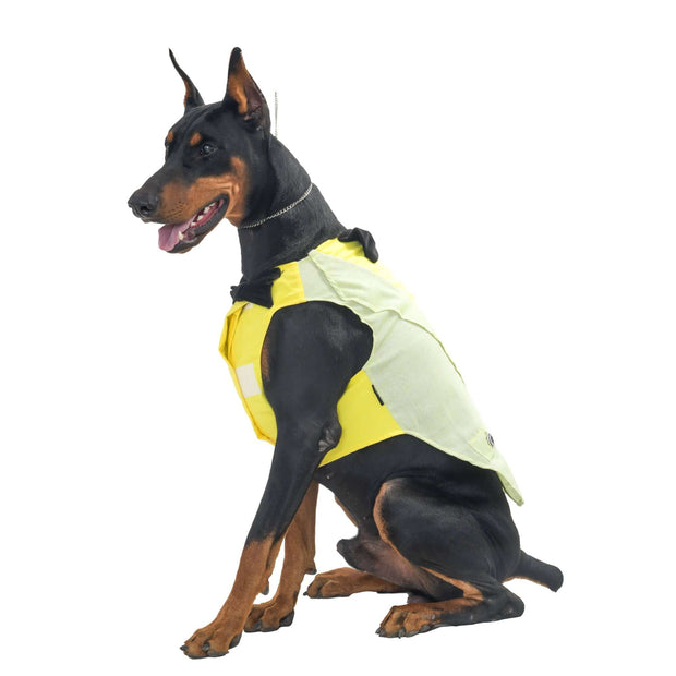 Customized Bright Yellow & Grey Cool Tuxedo for Dogs