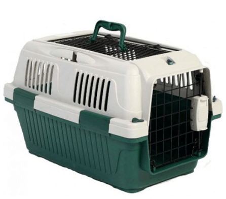 Nutra Pet Dog & Cat Carrier Box Open Top- GREEN