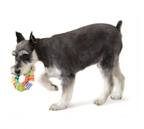 PetStages Soft Toss Ring Dog Toy