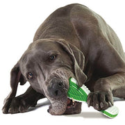PetStages Finity Toothbrush Dog Toy