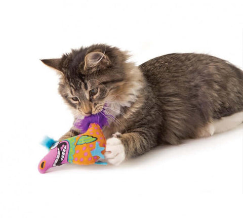 PetStages Madcap Big Mouth Bird Cat Toy