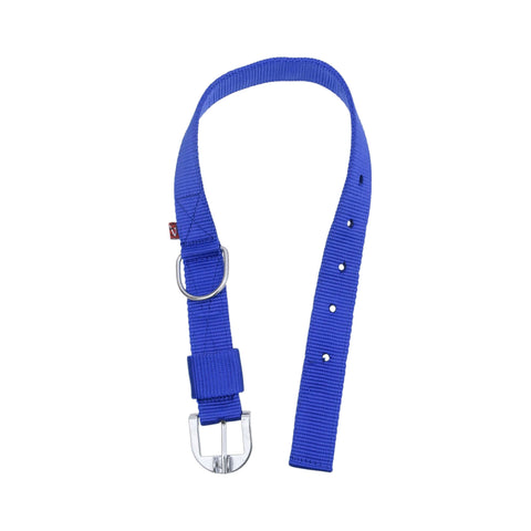 Pets Empire Adjustable Nylon Dog Collar – Blue