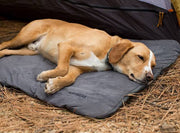 Ruffwear Mt. Bachelor Pad – Bed For Dogs