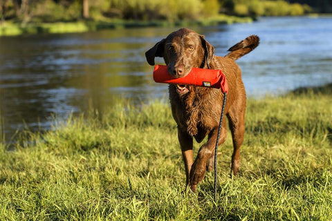 Ruffwear Lunker Rubber Throw Toy For Dogs
