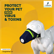 BCD Dog Anti Pollution PM2.5 N95 Viral Protective Mask