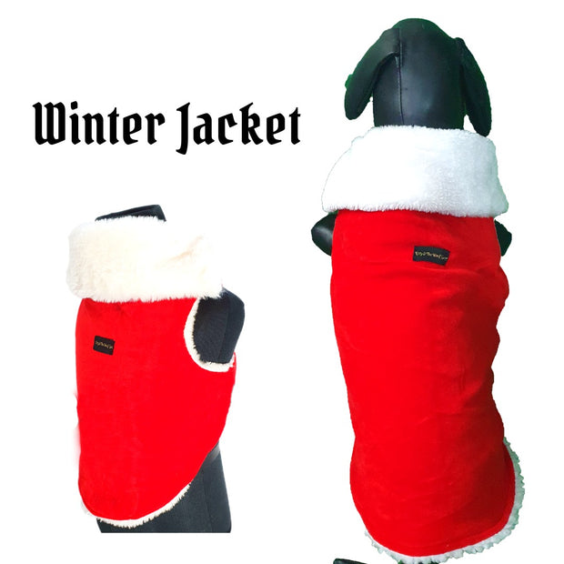 Regular Christmas Winter Wear For Dogs